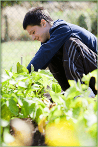 boy at school gardening